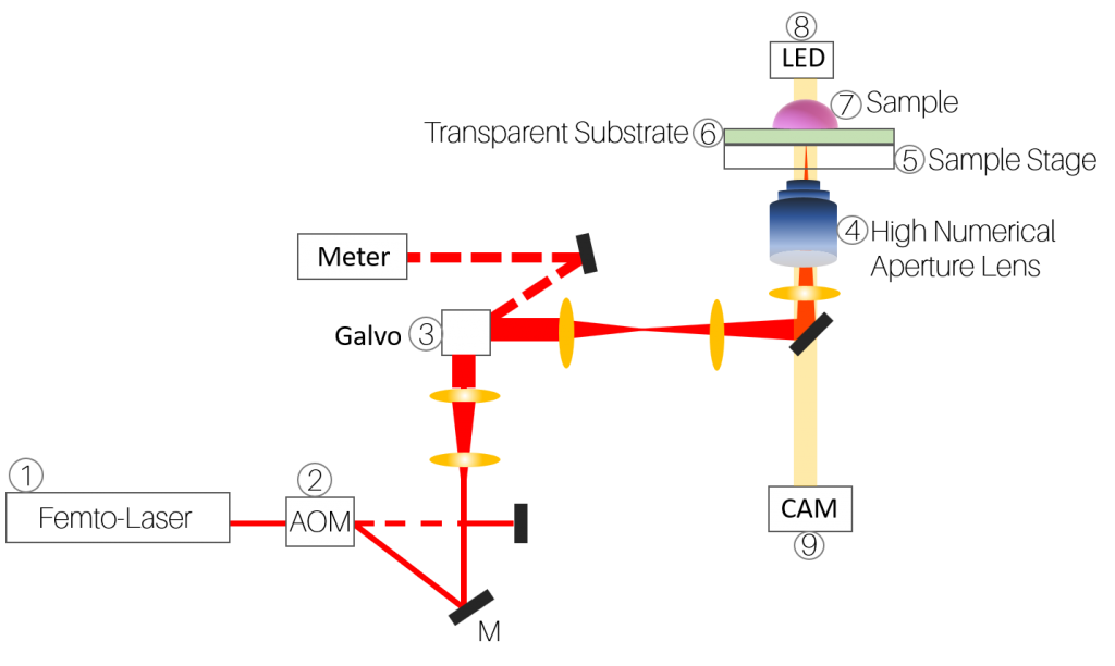 The basic two-photon lithography setup